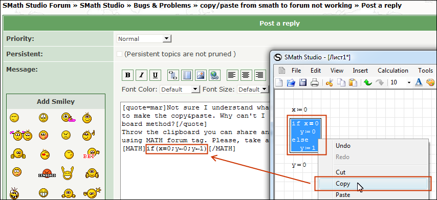 Figure 5: Copying an expression to the forum via standard system clipboard.